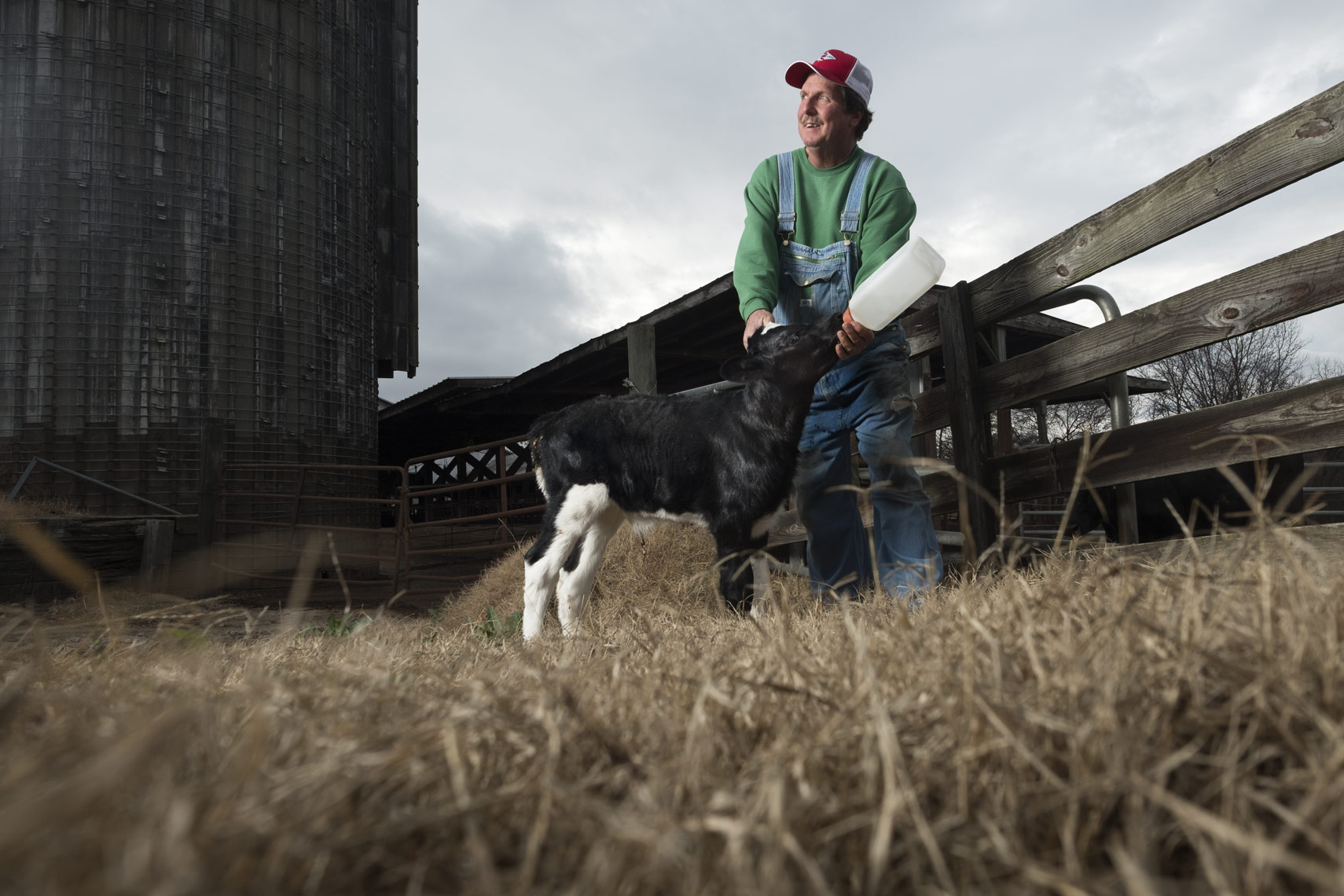 Feeding the Cow in Spartanburg by photographer Ian Curcio